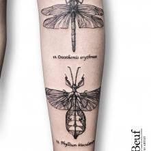 tattoo_50''